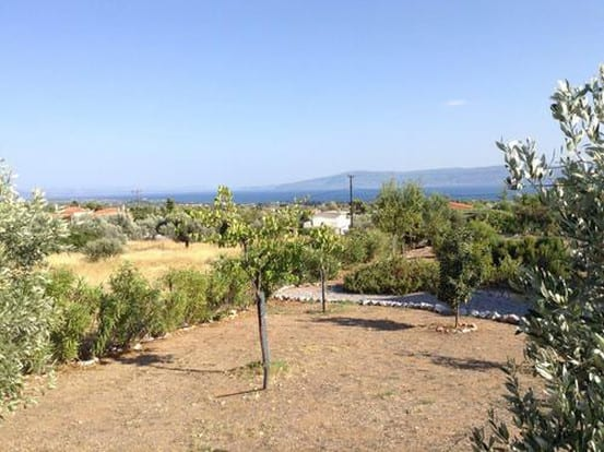 Evia a villa with pool for sale at Eretria