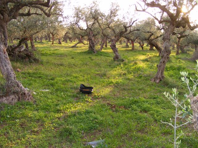 Agios Nikolaos building land in Mani