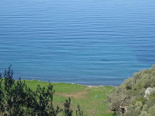 Galatas Taktikopouli large beachfront plot