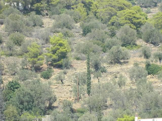 building land on Poros