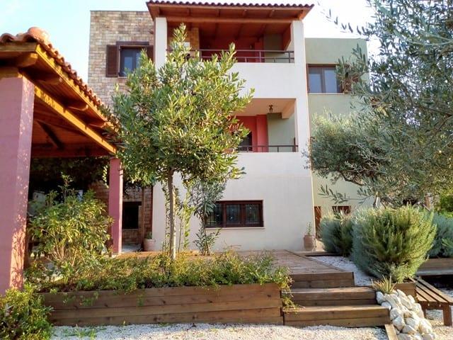 luxury investment villa